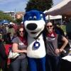 DogFest 2013