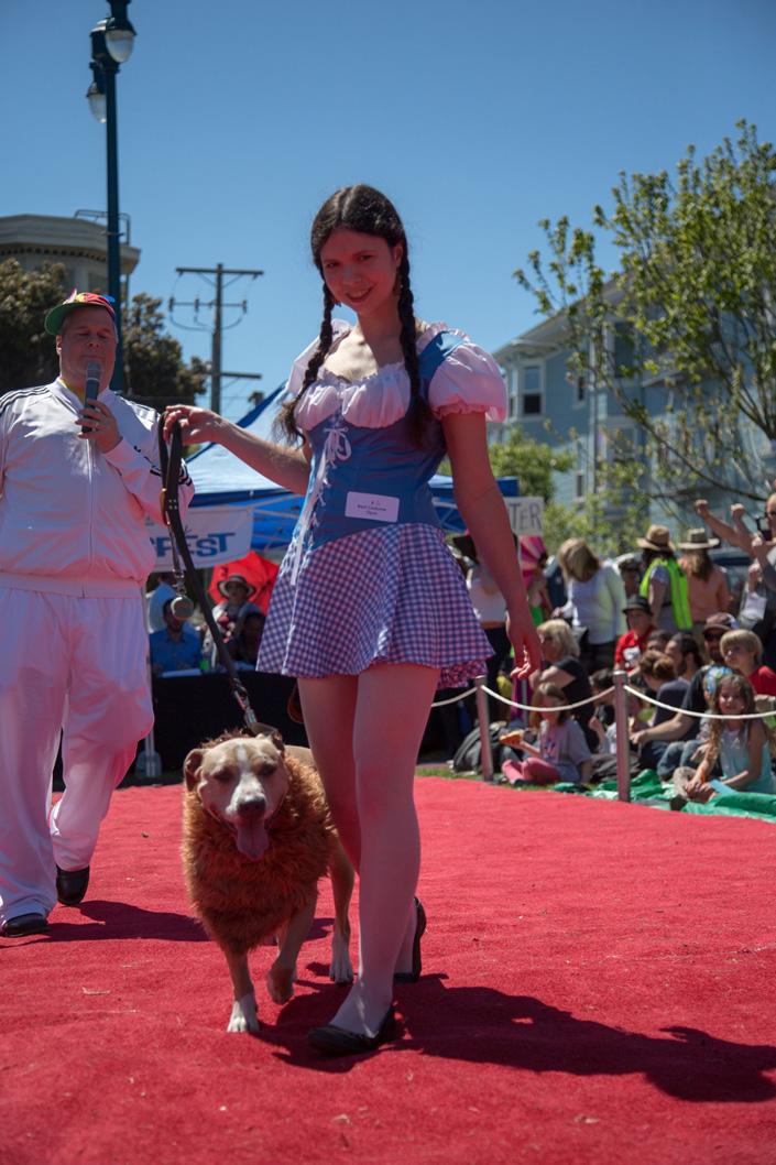 DogFest 2016 Photo