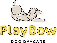 PlayBow