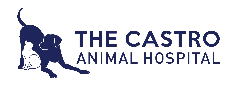 Castro Animal Hospital